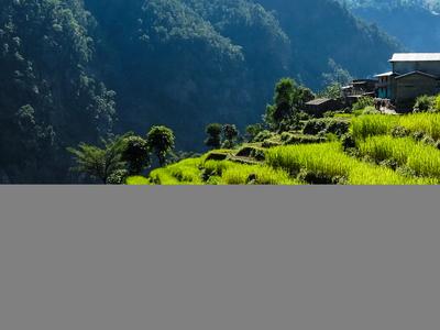 Himalaya 37