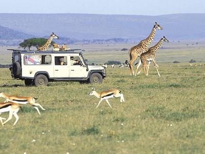 Land Cruser Mara