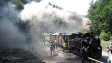 Steam Train Maramures