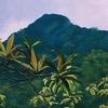 Pulie Badze Santuario de Vida Silvestre