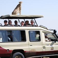 Bell Cheetah Vehicle