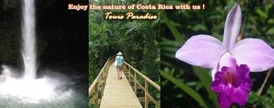 Costa Rica Trips 2