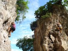 Thailand Mullins 173