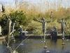 Brookgreen  Gardens  Sculpture Area