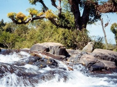 Papanasini River