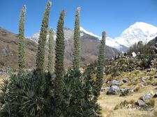 Alpamayo Valley