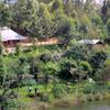 Camp On The Shore Of Lake Bunyonyi
