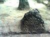 Rocks At Akkanna Madanna Caves