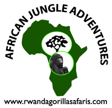 African Jungle Logo