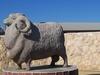 Karoonda Grows Big Sheep Like This Concrete One