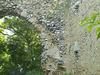 The Overgrown Ruins Of Minsden Chapel