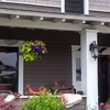 Montgomery House Bed And Breakfast