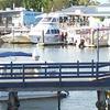 Noosa Harbour, Tewantin