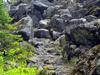 Trail Along The Takh Takh Lava Flow