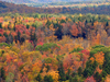 Fall Foliage Seen From Hogback Mountain