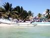 Beachfront Of Sarteneja