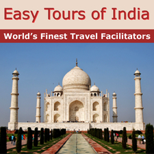Easy Tours Of India Logo
