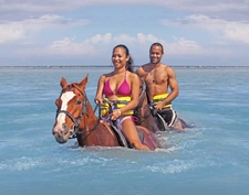 Horse Back Ride & Swim