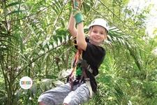 Zipline Canopy
