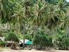 Koh Thonsáy's Main Beach