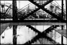 Lisbonphotographer Foto 06