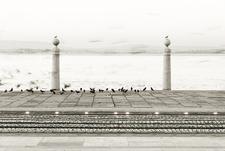 Lisbonphotographer Foto 01 Front