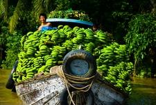 Mekong Floading Market