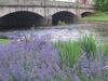 Rennie Bridge Over The River Esk