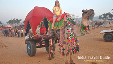 India Travel Tourism