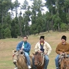 Horse Riding At Pahalgam