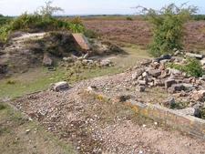 WW2 Remains At Ibsley