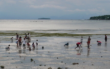 Pescador Island From Moalboal Bay