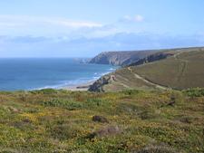 Porthtowan Cliffs