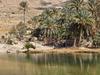 Wadi Bani Khalid Heading North