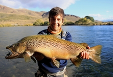 The Largest Brown Trout Of Patagonia