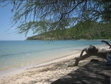 Ariea Branca Beach