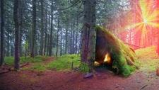 Summer Wilderness Survival Course. Lake Tahoe