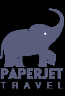 Paper Jet Logo