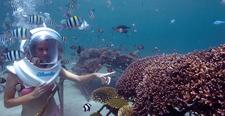 Seawalker Sanur Bali Tour94 2