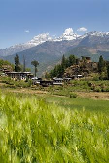 Drukgyel Dzong 8