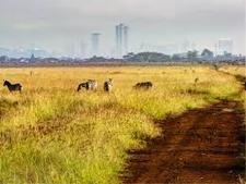 Park Nairobi