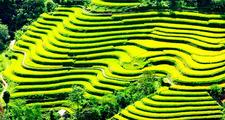 Sapa Vietnam 750x400