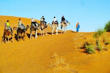 Morocco Desert Camel Trek Tour From Marrakech