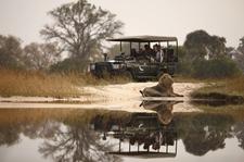 Safari | Africa&You;