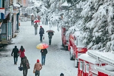 Shimla Kullu Manali Tour Packages Honeymoon Trip H P Tours 4