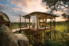 Tree House | Kruger | Africa&You;
