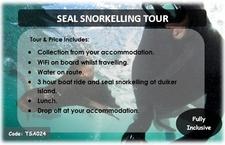 Tsa024 Seal Snorkelling