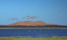 Merzouga Lake