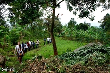 Team Building Trek At Wanale Ranges In Mbale, Uganda