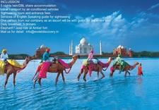 Evolet Discovery Tour India